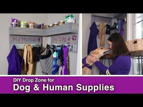 DIY Dog and Human Drop Zone // Leash /Jacket /Treats