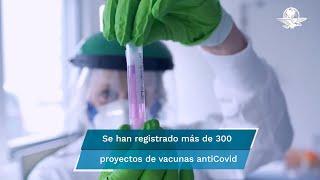 El antígeno que se busca producir en el país se basa en la creación, en EU, de dos proteínas que ya varias naciones prueban a fin de  enfrentar al virus a un bajo costo