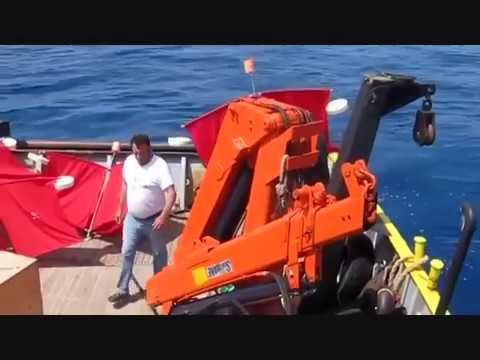 Department of Marine Sciences, University of Aegean, Lesvos, Greece
