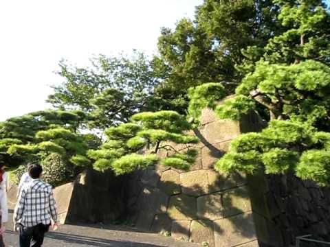 Walking around Chiyoda Ward Park Tokyo