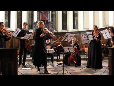 Turin Baroque Orchestra - Vivaldi, concerto per Violino e Organo obbligato in Sol min