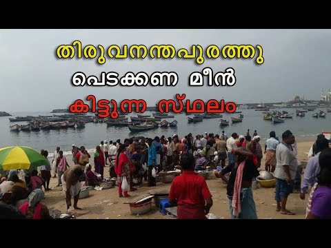 VIZHINJAM FISHING HARBOUR