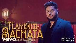 Daviles de Novelda - Flamenco y Bachata