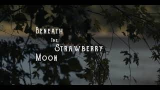 Beneath the Strawberry Moon
