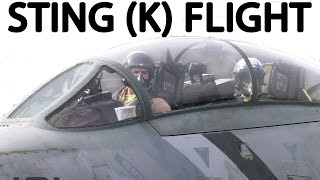 Cockpit Audio Jet Fighter Dogfight (NSFW, Language)
