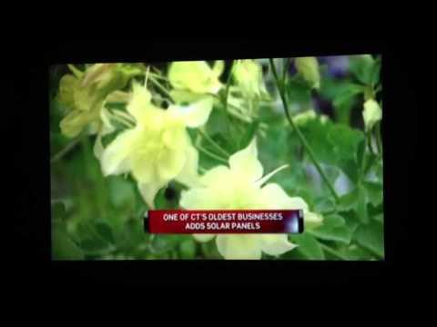Garden center goes solar