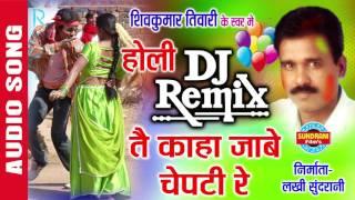 TAI KAHA JABE CHEPTI - तै काहा जाबे चेपटी रे - D.J. Remix - Shivkumar Tiwari - Faag Geet
