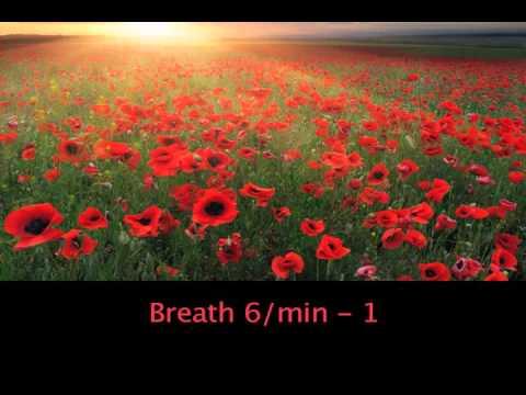 Breath 6   1