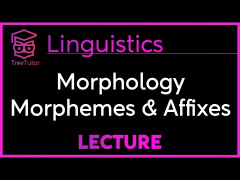 [Introduction to Linguistics] Free and Bound Morphemes, Affixes