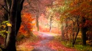 ANDY WILLIAMS   AUTUMN LEAVES