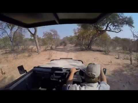 Safari in Caprivi strip with the Mazambala Lodge