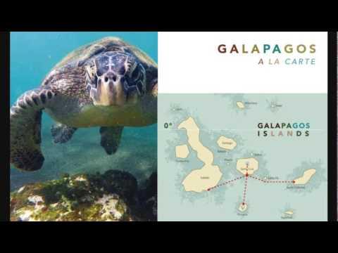 Webinar: Galapagos Lodge-based Journeys with Tropic Ecuador