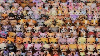 My Littlest Pet Shop Collection! (500+ LPS)