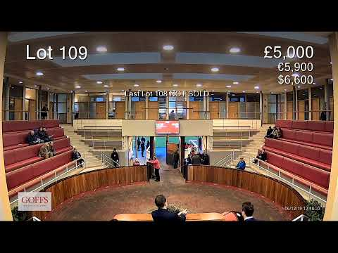 Doncaster December HIT Sale 2019