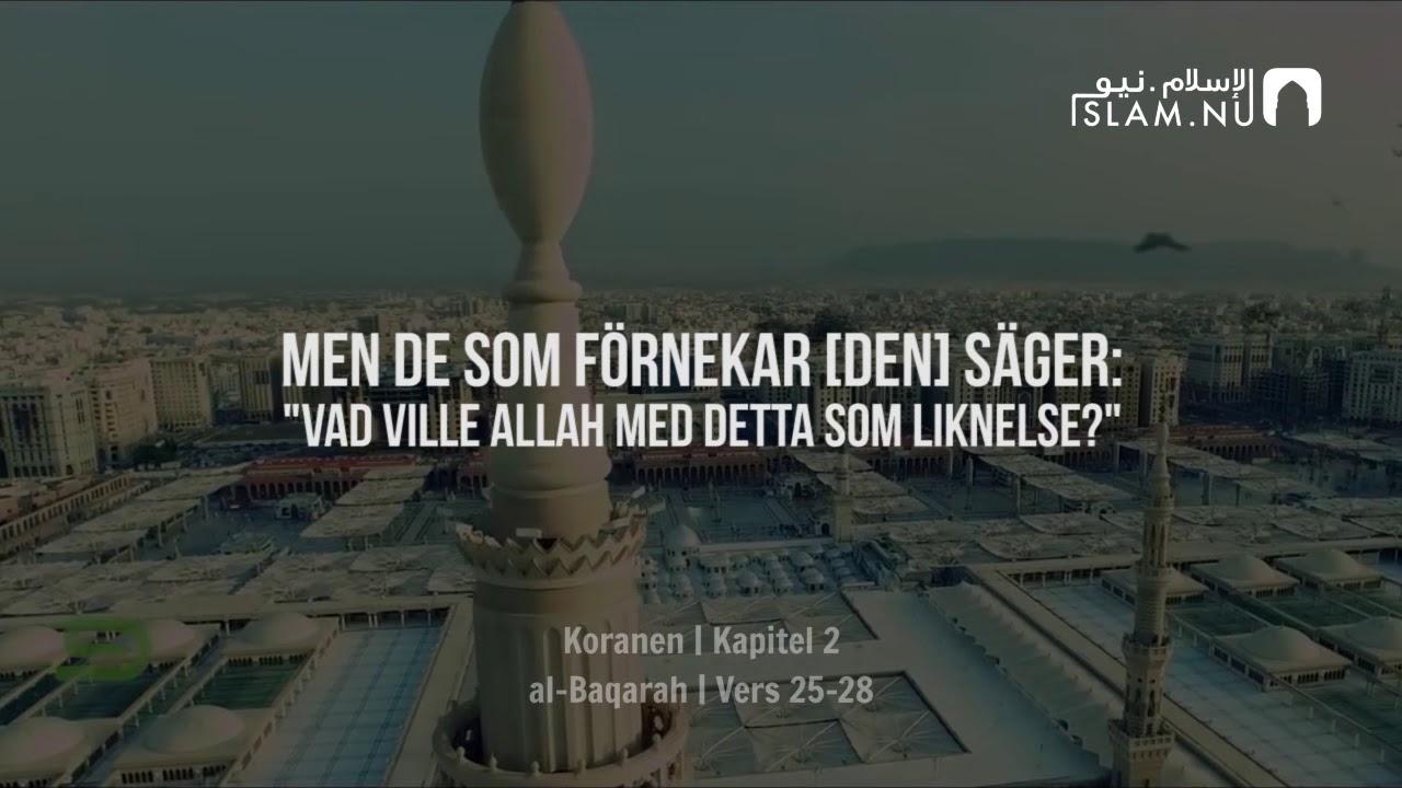 Surah Al-Baqarah (25-28) - Muhammad Siddiq Al-Minshawi