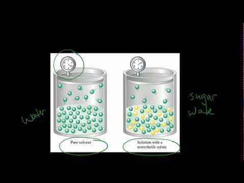 Vapor Pressure Lowering : Explaining Raoults Law