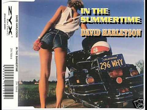 In The Summer Time - David Harleyson