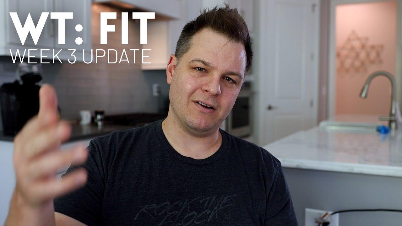 WT Fit: Week 3 update