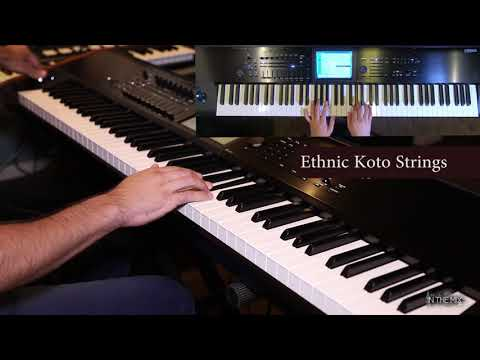 Korg Kronos - An Abstract Pad, Koto Strings & Dist. Lead Guitar Improv.