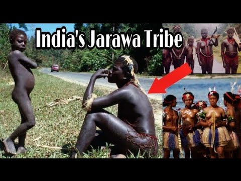 Tribes Of Andaman || Jarawa Sentineless, Onge Tribe || Vlog #35