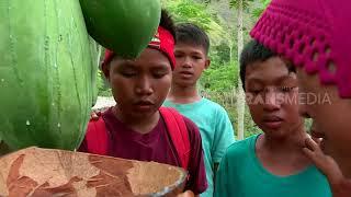 BOCAH PETUALANG   GETAH PEPAYA DAN BURUNG KUTILANG (01/02/18) 2-3