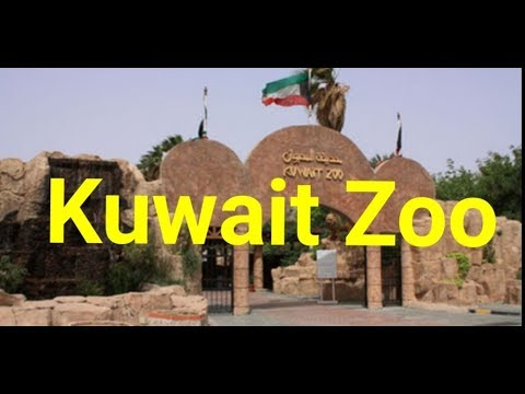 Kuwait zoo حديقة الحيوان بالكويت | Animals | Travel vlog | Balochi | National park