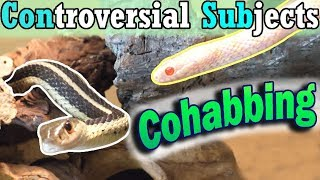 Con-Sub: Can You Cohab Snakes?