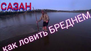 Ловля САЗАНА на БРЕДЕНЬ Рыбалка на Дону 2021