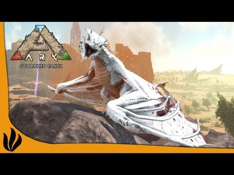 ARK: Scorched Earth FR #24 - ON CHASSE DU WYVERN ALPHA !