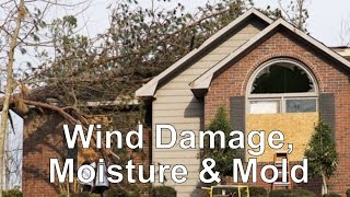 Wind Damage, Moisture & Mold