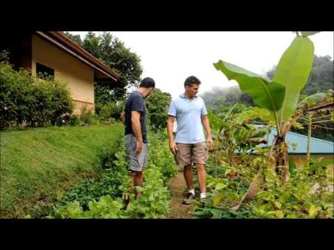 Serenity Gardens Eco Village and Osa Mountain Village