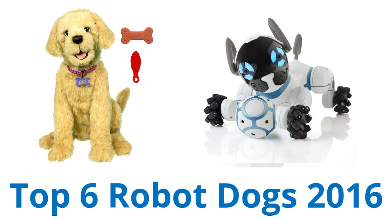 6 Best Robot Dogs 2016