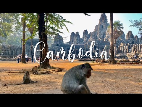 IPhone XR Cinematic | Zhiyun Smooth 4 | Siem Reap Cambodia | Angkor Wat Temples