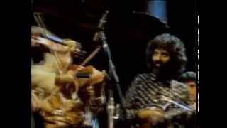 St�phane Grappelli And David Grisman Sweet Georgia Brown San Francisco 1982 Official Hq Video