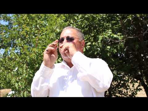 Mehmet Ali Kayabaş - Sipsi - Burdur Dirmil Gelin Alma Havası