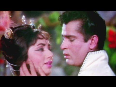 Tumne Pukara Aur Hum Chale Aaye - Shammi Kapoor, Sadhna, Rajkumar Song (duet)
