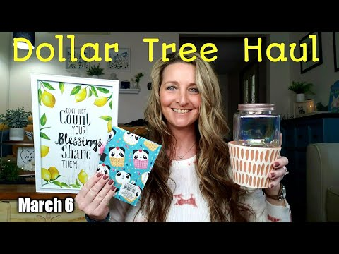 Dollar Tree Haul | Exciting New Items | Ideas & Opening Items