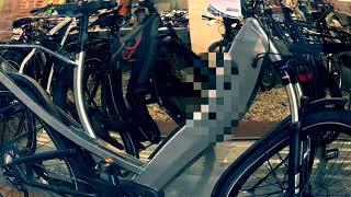Pigor & Eichhorn – Elektroautos