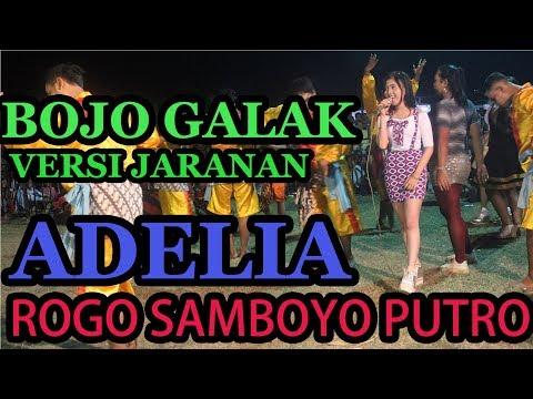 BOJO GALAK VOCAL ADELIA ROGO SAMBOYO PUTRO