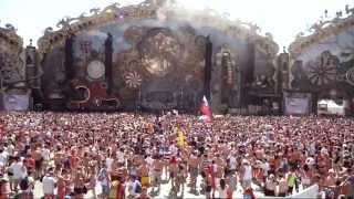 Wolfpack Tomorrowland 2014  Mainstage