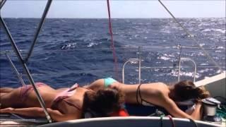 Segla över Atlanten, 16 dygn på 3 minuter