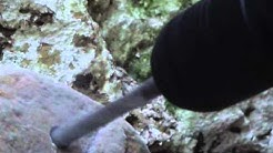 Hard Stone: Hammer Drill vs Rotary Hammer