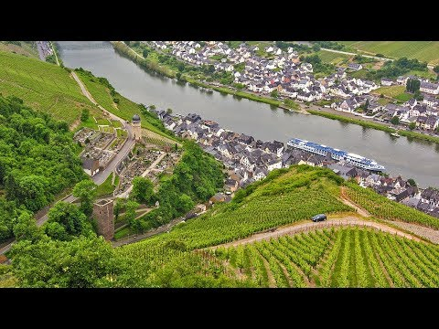 German Riesling Wine Journey