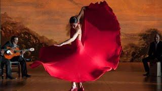 """""""A mi niña Sarita"""" ALEGRÍA. Sara Baras. 2010. """"Flamenco, flamenco"""" de Carlos Saura"""