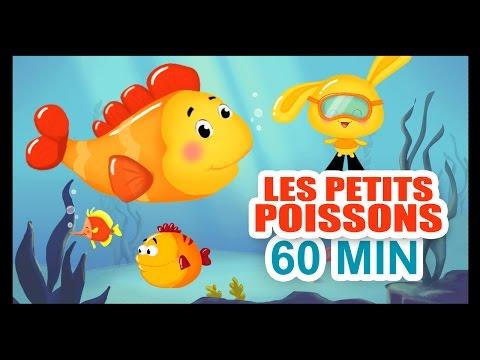 Les petits poissons dans l'eau - 1H DE COMPTINES POUR LES PETITS - Titounis