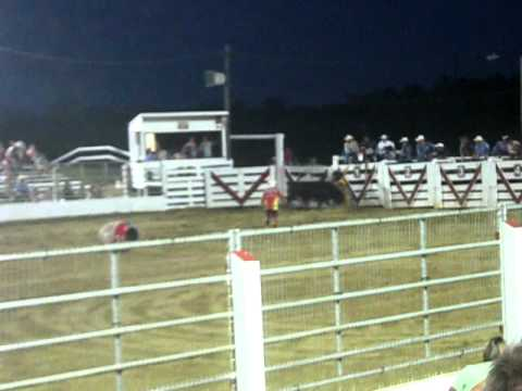 Cowtown Rodeo Bull