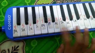 Angka not pianika cicak cicak di dinding