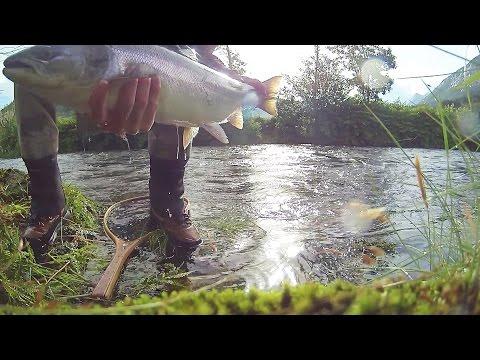 Laksefiske 2015 - Årets siste dag på Vestlandet