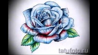 тату розы эскизы   смотреть лучшие эскизы для татуировки