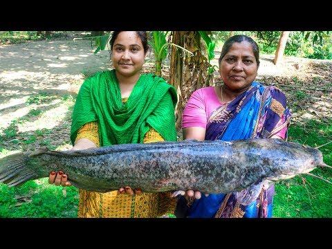 Walking Catfish Recipe: Walking Catfish Cooking Recipe for Village Kids   Village Food Factory